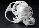 FRACTAL CRANIUM - Small in White Strong & Flexible
