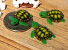 Little Turtle (3 pieces bundle) in Full Color Sandstone