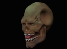 FridayThe13thPainted Joker Skull in Full Color Sandstone