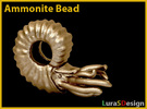 Ammonite Bead in Stainless Steel