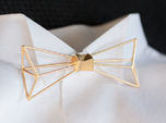 Bow Tie and Necklace in one