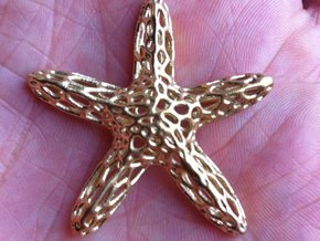 Starfish-voronoi2b Smooth-tr1 Rescaled(0.54) in Raw Brass