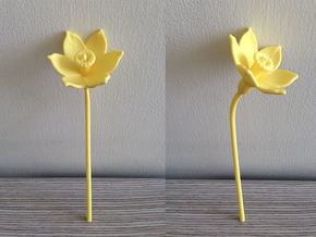 Narcissus Flower in Yellow Strong & Flexible Polished