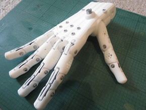 3D Printed Hand Right in White Strong & Flexible