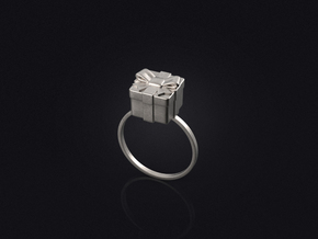 Christmas Box Ring 01 in Stainless Steel