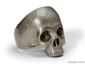 H. sapien: skull in Stainless Steel