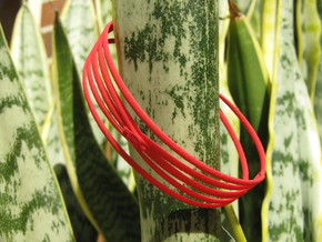 Conchoid 4 Bangle in Red Strong & Flexible Polished