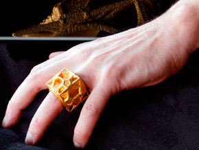 Cosmographicum Fractalium - The Ring in Matte Gold Steel