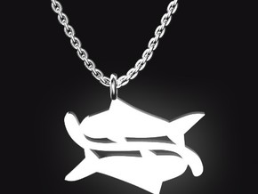 PISCES for 2/19~3/20 birth. in Stainless Steel