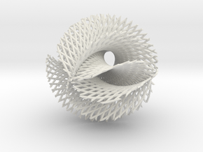 6x5 ribbon on hypersphere in White Strong & Flexible