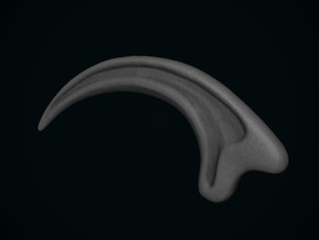 JP Velociraptor Claw - Hollow in White Strong & Flexible