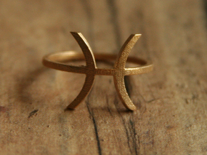 Pisces Ring - Pisces Zodiac Ring in Raw Bronze