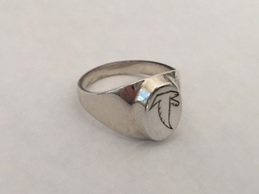 Falcon Class Ring in Polished Silver
