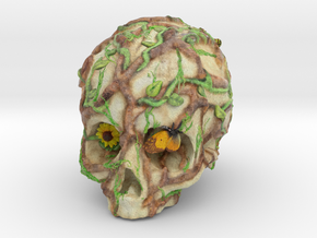 Skull and Vines - From Death Springs Life in Full Color Sandstone