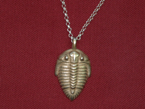 Trilobite Fossil Necklace in Stainless Steel