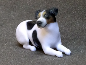 Laying Jack Russell Terrier 1 in Full Color Sandstone