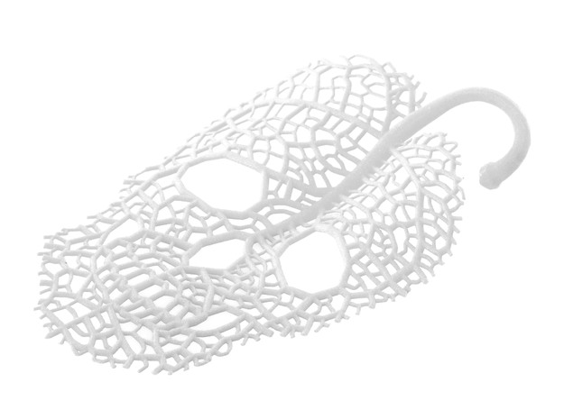 Leaf Skeleton Ornament 3d printed