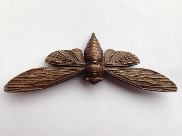 Bronze-polished Steel Cicada 3d printed Polished Bronze Steel Cicada