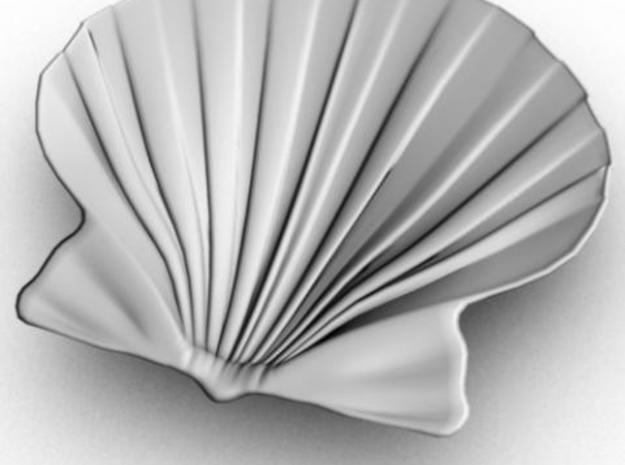 Scallop Shell 3d printed Maya render from the inside.