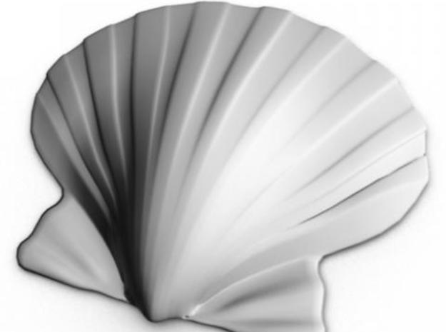 Scallop Shell 3d printed Maya render from the outside.