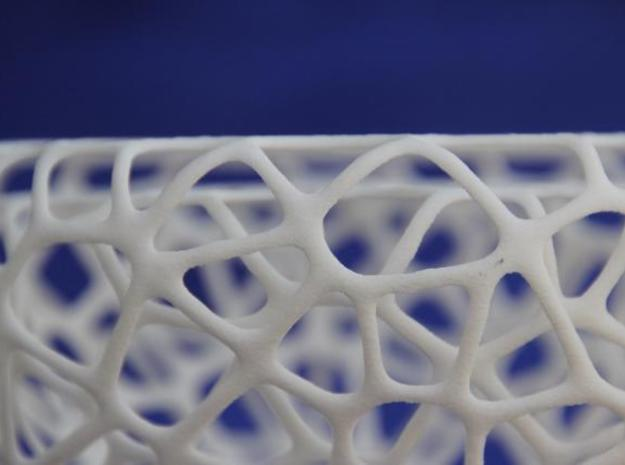 Heart Glass 4 3d printed The double layered voroni structure gives it robustness while being flexible at the same time.