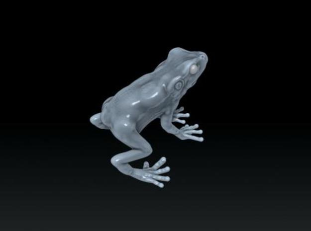 frog 2cm 3d printed Description