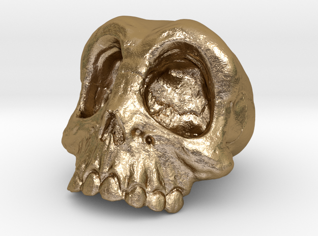 Skull with more detail 3d printed