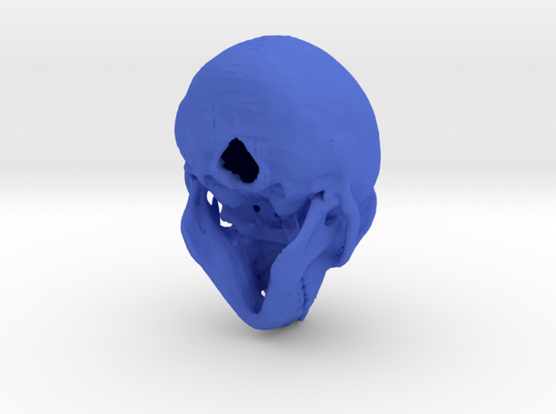 Spider Monkey Skull - 53mm 3d printed
