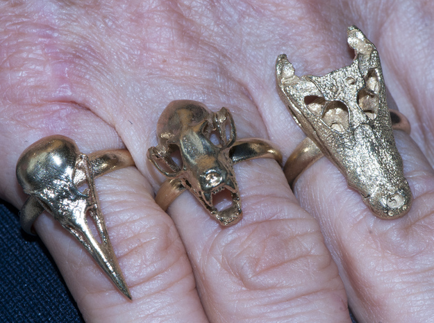 Alligator Skull Adjustable Ring 3d printed Crow, Fruit Bat and Alligator rings in Brass