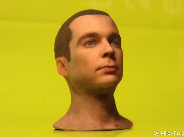 Sheldon Cooper - Jim Parsons - Scale 1/6 3d printed