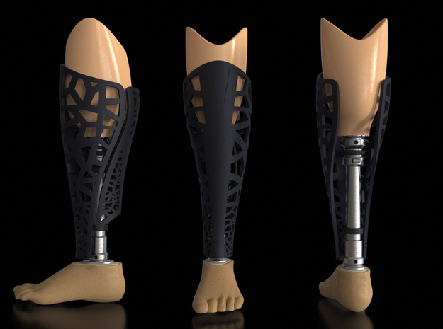 prothesis covers