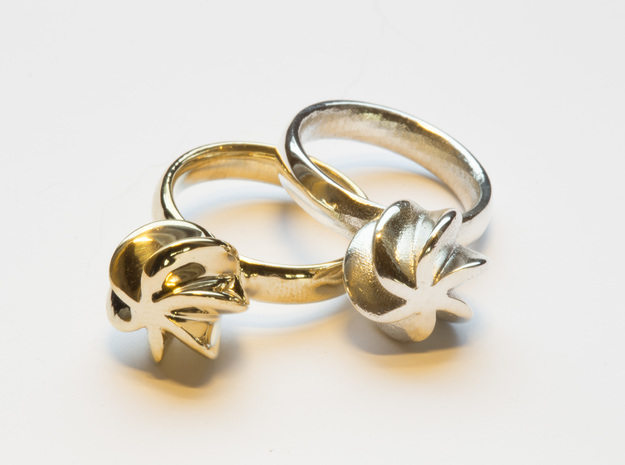 Flora Ring, Size US6 3d printed The Flora ring in polished brass and polished silver.