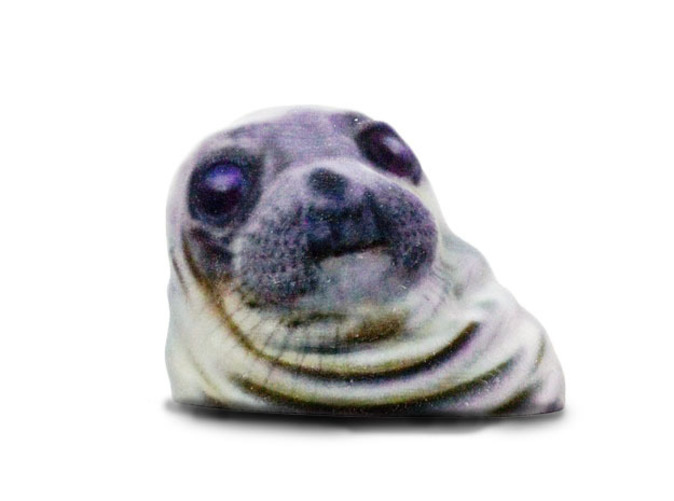 Awkward Moment Seal (LXXS83MUA) by EricHo