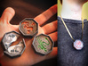 Chinese Zodiac Talismans 3d printed Talismans are about 2 inches wide and 1 inch thick, makes a nice necklace!