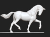 Shadow With Dressage 3d printed