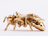 Beekeeper Chess Collection: Pawn 3d printed Polished Brass