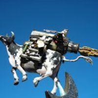 spacecow2589