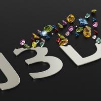 Jewelry3D