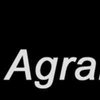 ackerratte