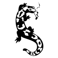 SmokingSalamander
