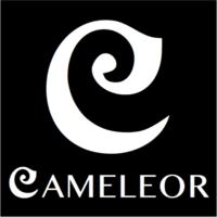 Cameleor3D
