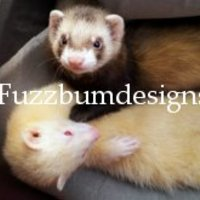 FerretDesigns