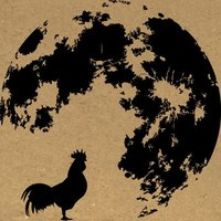 Nocturnal_Rooster_Design