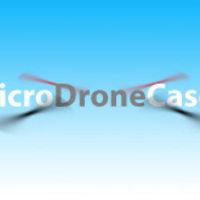 MicroDroneCases