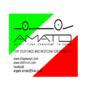 Amato_Chassis_Design