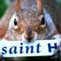 saint_h