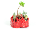 Anemone Trefoil Planter in Gloss Red Porcelain