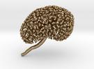 Metal Kidney Ureteric Tree (Mountable) in Polished Gold Steel