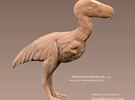 Paraphysornis 1:20 v2 in White Strong & Flexible