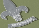 1907 Fleur de Lis Badge in Metallic Plastic